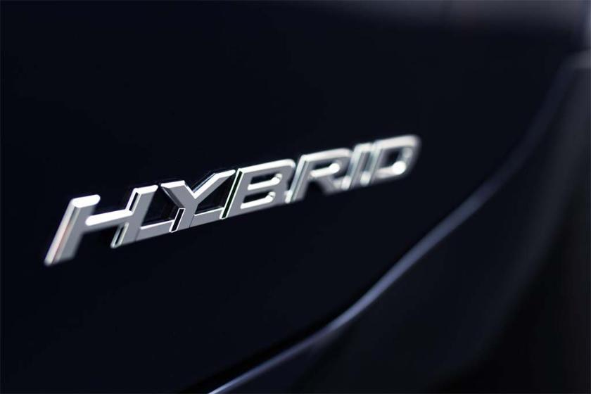 <b>Preferencias hacia los híbridos.</b>